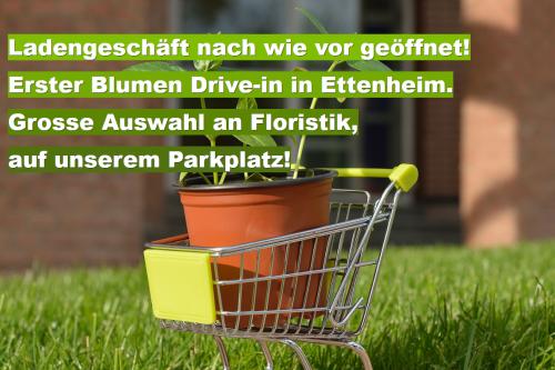Erster Blumen Drive-In in Ettenheim!