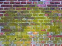 Winterspezial mit Festpreisgarantie für Ihre Fassadenreinigung