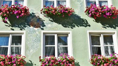 Fensterdichtungen austauschen