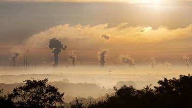 Ihre CO2-Bilanz sofort verbessern!