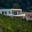 Wein- & Hoffest im Familien-Weingut Renner
