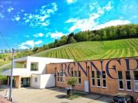 Was für ein Frühlingstag - Familien-Weingut Renner
