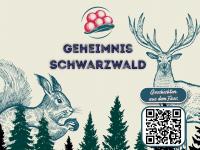 Geheimnis Schwarzwald - Erlebnis und Genuss der besonderen Art