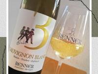 2020er Sauvignon Blanc, Kabinett trocken