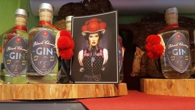 Gin, Alkohol,