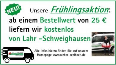 Lieferung von Lahr - Schweighausen