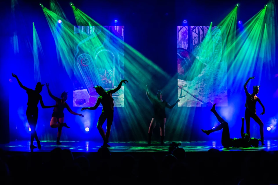 Meineke Dance Academy