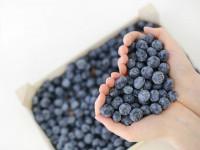 Die 12 wichtigsten Ernährungstipps für ein starkes Immmunsystem