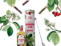 Am 12. Juni ist der World Gin Day